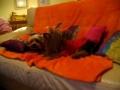 Eu e o mano no sofá ;o)