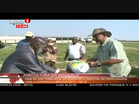 Agricultura em Benguela